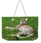 A Cheetah Resting On The Grass Weekender Tote Bag