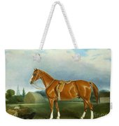A Chestnut Hunter And A Spaniel By Farm Buildings  Weekender Tote Bag