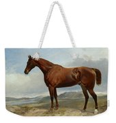 A Chestnut Hunter In A Landscape Weekender Tote Bag
