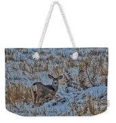 A Christmas Day Young Buck Weekender Tote Bag