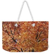 A Claret Ash Tree In Its Autumn Colors Weekender Tote Bag