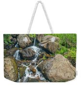 A Clarion Call For The Awareness Of The Sanctity Of Nature  Weekender Tote Bag