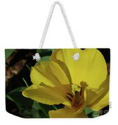 A Close Up Look At A Yellow Flowering Tulip Blossom Weekender Tote Bag