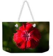 A Close Up Of A Dianthis Flower Weekender Tote Bag