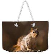 A Close-up Of A Fox Squirrel Sciurus Weekender Tote Bag