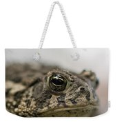 A Close-up Of A Toad Found In Dunbar Weekender Tote Bag