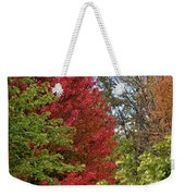 A Collection Of Fall Colours Weekender Tote Bag