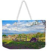 A Costa Rica View Weekender Tote Bag