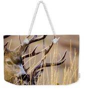 A Couple Of Bucks Weekender Tote Bag