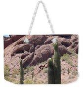 A Couple Of Cacti In Phoenix Weekender Tote Bag