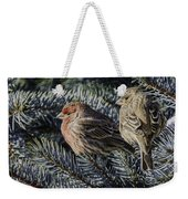 A Couple Of House Finch Weekender Tote Bag by LeeAnn McLaneGoetz McLaneGoetzStudioLLCcom