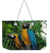 A Curious Pair Weekender Tote Bag