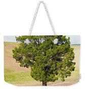A December Cedar Weekender Tote Bag