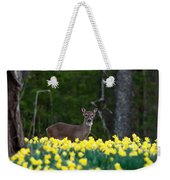 A Deer And Daffodils 4 Weekender Tote Bag
