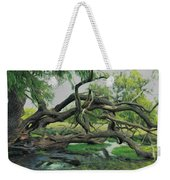 A Dramatic Change Of Perspective Weekender Tote Bag
