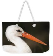 A European White Stork At The Lincoln Weekender Tote Bag