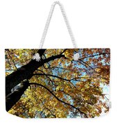 A Falling Maple Leaf Weekender Tote Bag