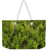 A Field Of Ferns Weekender Tote Bag