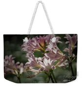 Peppermint Surprise Lily - A Floral Abstract Weekender Tote Bag