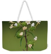 A Flower Tower Weekender Tote Bag