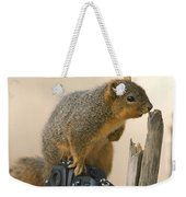 A Fox Squirrel Sciurus Niger Sits Weekender Tote Bag