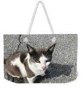 A Friendly Barn Cat Weekender Tote Bag