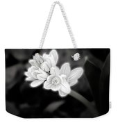 A Glowing Daffodil Weekender Tote Bag