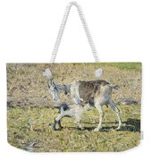 A Goat With Her Kid Weekender Tote Bag