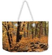 A Golden Autumn Forest  Weekender Tote Bag