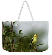 A Goldfinch In A Pear Tree Weekender Tote Bag