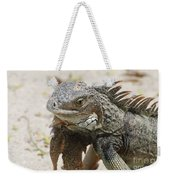 A Gray Iguana With Spines Along It's Back Weekender Tote Bag