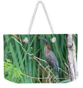 A Green Heron By The Canal Weekender Tote Bag