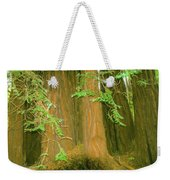 A Group Giant Redwood Trees In Muir Woods,california. Weekender Tote Bag