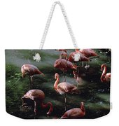 A Group Of Flamingos At The Folsom Weekender Tote Bag