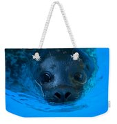 A Harbor Seal At The Lincoln Childrens Weekender Tote Bag