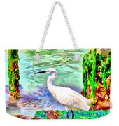 a heron is walking on a stair about the Grand Canal Weekender Tote Bag