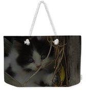 A Hiding Kitten Weekender Tote Bag