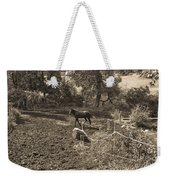 A Horse In The Field Weekender Tote Bag