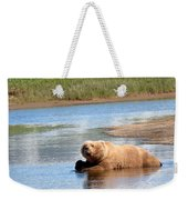 A Hot Day In The Hallo Bay Katmai National Park Preserve Weekender Tote Bag