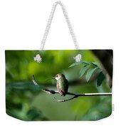 A Hummingbird Rests Weekender Tote Bag