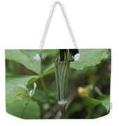 A Jack In The Pulpit  Grows In The Mist Weekender Tote Bag