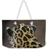 A Jaguar At Omahas Henry Doorly Zoo Weekender Tote Bag
