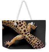 A Leopard Gecko Eublpharis Macularis Weekender Tote Bag