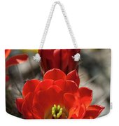 A Little Red Beauty  Weekender Tote Bag