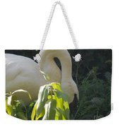 A Little Sun Weekender Tote Bag