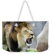 A Male Lion, Panthera Leo, Roaring Loudly Weekender Tote Bag