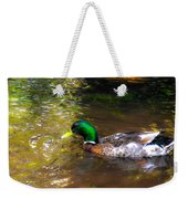 A Male Mallard Duck 3 Weekender Tote Bag