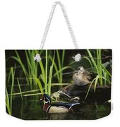 A Male Wood Duck Swims Past Its Mate Weekender Tote Bag