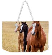 A Mare And Two Friends Weekender Tote Bag