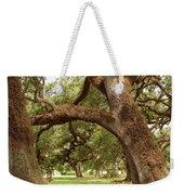 A Maze Of Oak Trees  Weekender Tote Bag